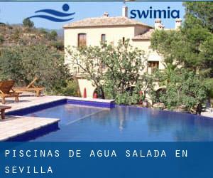 Piscinas de agua salada en sevilla gu a de piscinas en for Piscina agua salada