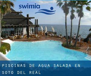 Piscinas de agua salada en madrid simple piscina de agua for Piscinas soto