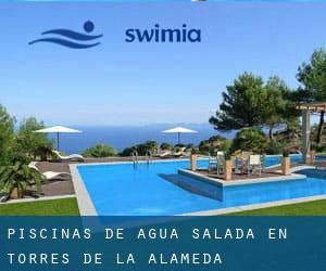 Piscina de agua salada en parla excellent piscina pequea - Piscina torres de la alameda ...