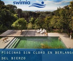 Piscinas sin cloro en berlanga del bierzo le n - Cloro en piscinas ...